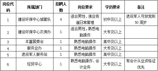 大丰区三龙镇人民政府招聘劳务派遣人员9名
