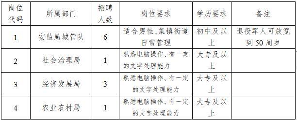 大豐區三龍鎮人民政府招聘勞務派遣人員11名