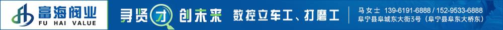 江苏富海阀门有限公司